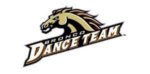 Western Michigan Dance Team